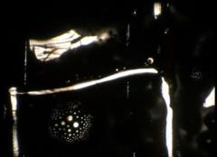 photogramme16sandrine kielwasser