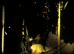 photogramme7sandrine kielwasser
